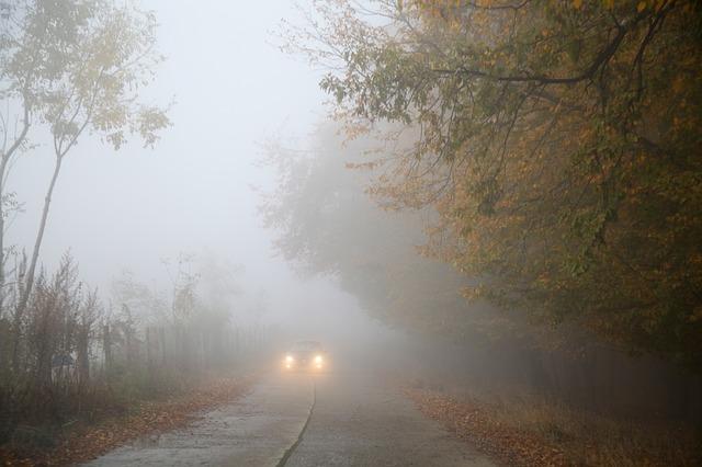 Fahren bei Nebel